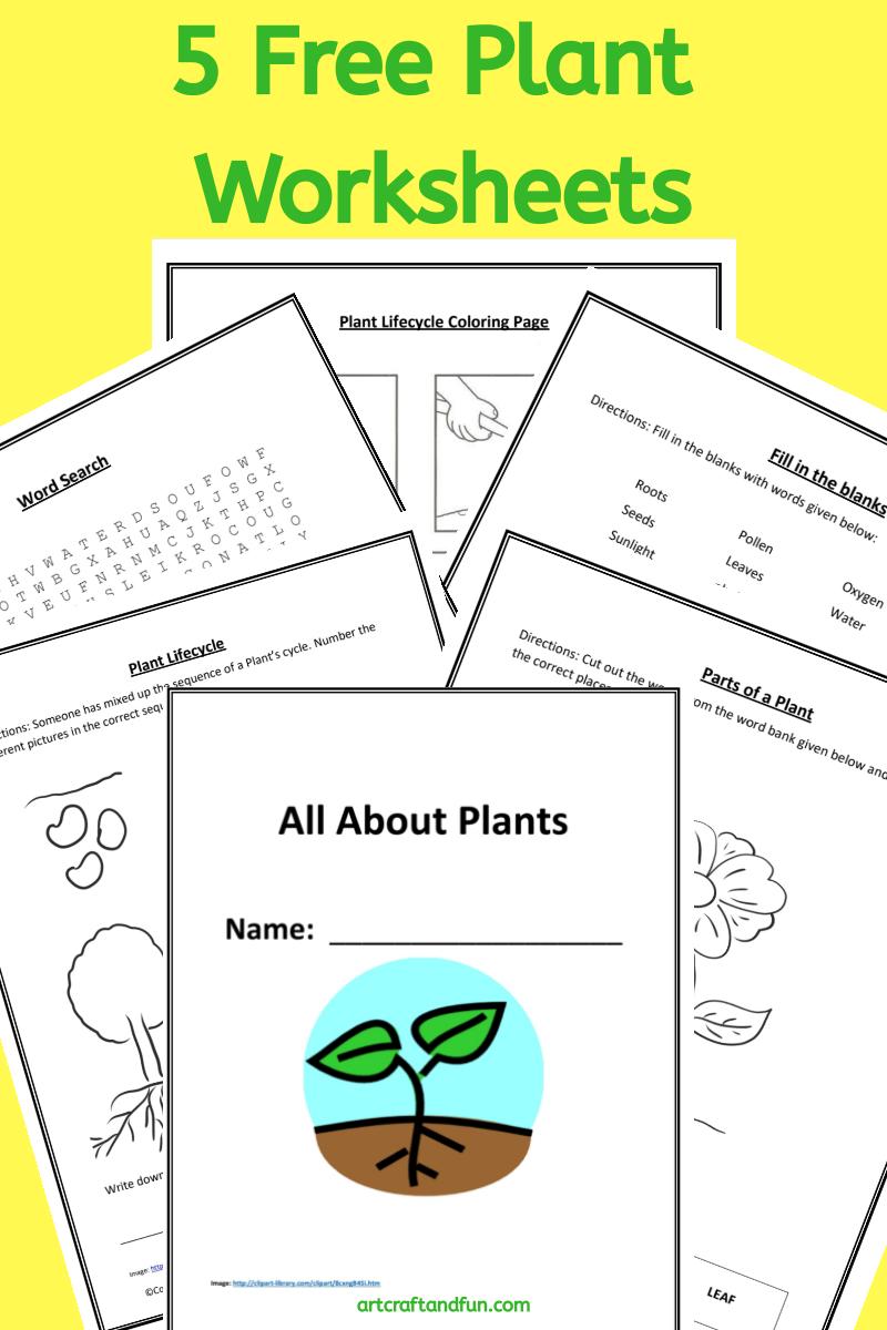 Grab 5 Free Printable Plant Worksheets In 2020 Plants Worksheets Printables Free Kids Worksheets