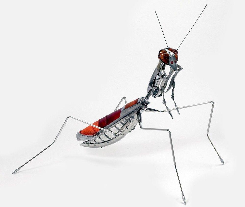Draht Insekten Fotos - Schaltplan-Ideen - mesoul.info