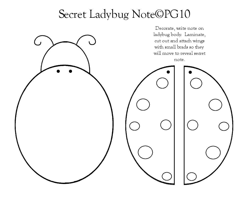 Ladybug Note Template I Made Bird Notes Paper Craft