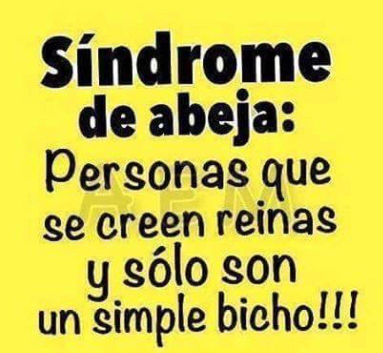 Quotes In Spanish About Friendship Síndrome De Abeja Personas Que Se Creen Reinas Y Sólo Son Un