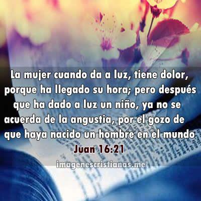 Lindas Imagenes De Textos Biblicos Para Mujeres Imagenes