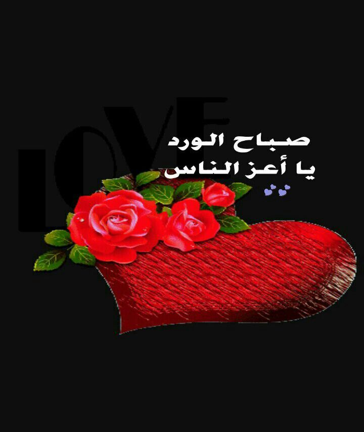 صباح الورد Good Morning Arabic Beautiful Flowers Wallpapers Morning Love Quotes