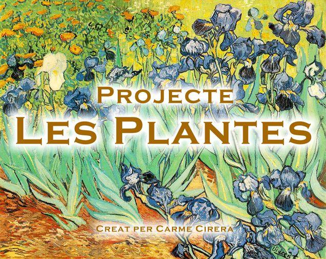 Projecte Les Plantes Cacera Del Tresor Huertos Escolares Proyectos Educativos Plantas Carnivoras