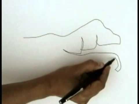 Metodo de contornos | Aprendiendo a dibujar y colorear | Pinterest ...