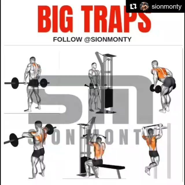 #Repost @sionmonty (@get_repost) BIG TRAPS WORKOUT. Follow me @sionmonty for more . Pack On #Repost @sionmonty (@get_repost) BIG TRAPS WORKOUT. Follow me @sionmonty for more . Pack On Muscle Fast & Transform Your Physique with my 3DHD Volume Training System Available from my website only! link in my Bio #bodybuilding #backday #backworkout #trapsworkout #Repost @sionmonty (@get_repost) BIG TRAPS WORKOUT. Follow me @sionmonty for more . Pack On #Repost @sionmonty (@get_repost) BIG TRAPS WO #trapsworkout
