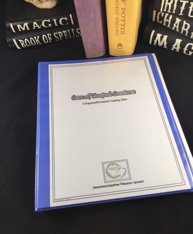 Hogwarts Inspired Summer Academy Class // Care of Magical