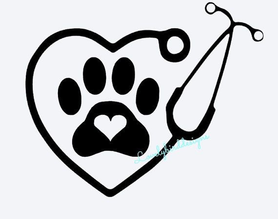 Can Hear Dogs Heartbeat