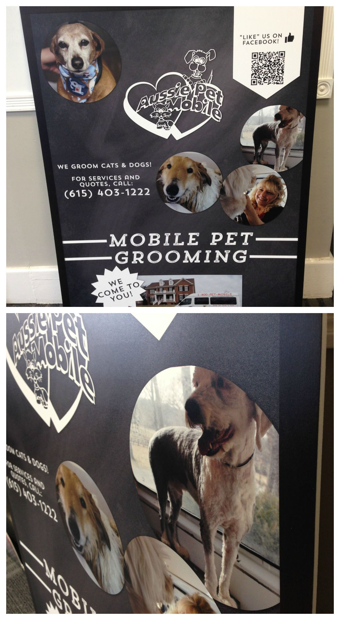 Large Foamcore Poster Advertising A Mobile Pet Grooming Service Mobile Pet Grooming Graphic Graphic Design