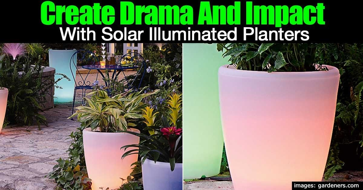 17 Illuminated Planters How To Make A Glowing Romantic