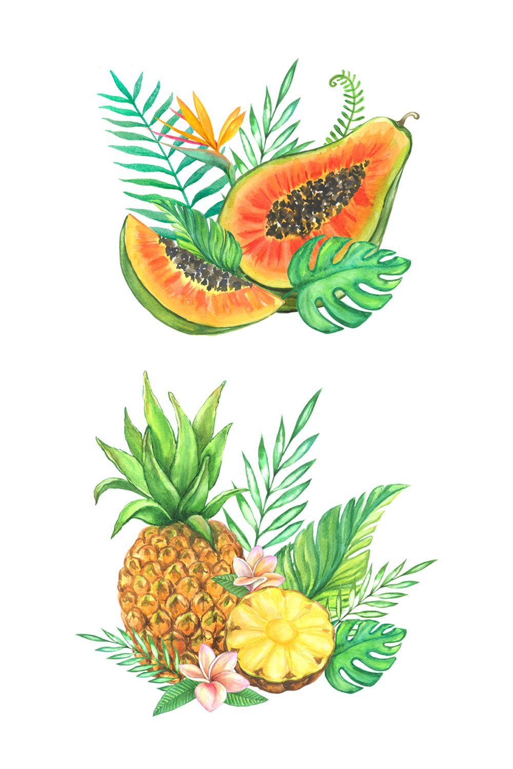 Fruit Clipart Beach Clipart Watercolor Tropical Fruit Etsy In 2021 Fruits Drawing Watercolor Fruit Vegetable Illustration