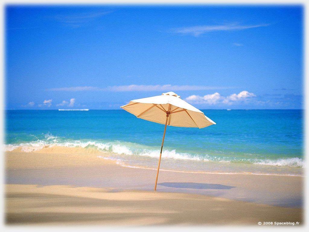T Recherche Google T Pinterest Summer Beaches And Search