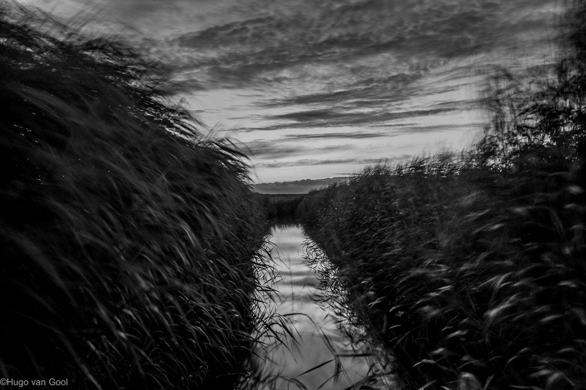 Op een winderige ochtend in de Arkemheen. Vlak voor zonsopkomst.