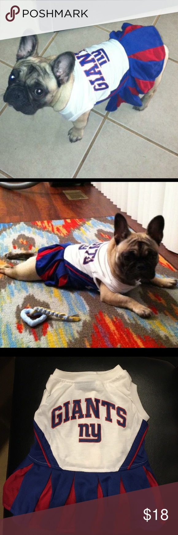 Dress up your pet game - Ny Giants Dog Dress Hello Football Fans Giants Fans What S Better Than