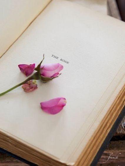 Imagem de book, flowers, and rose