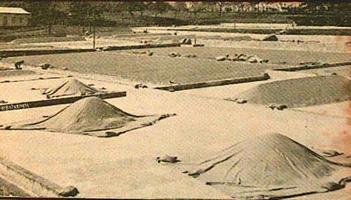 Resultado de imagen para fotos antiguas de  beneficio tournón