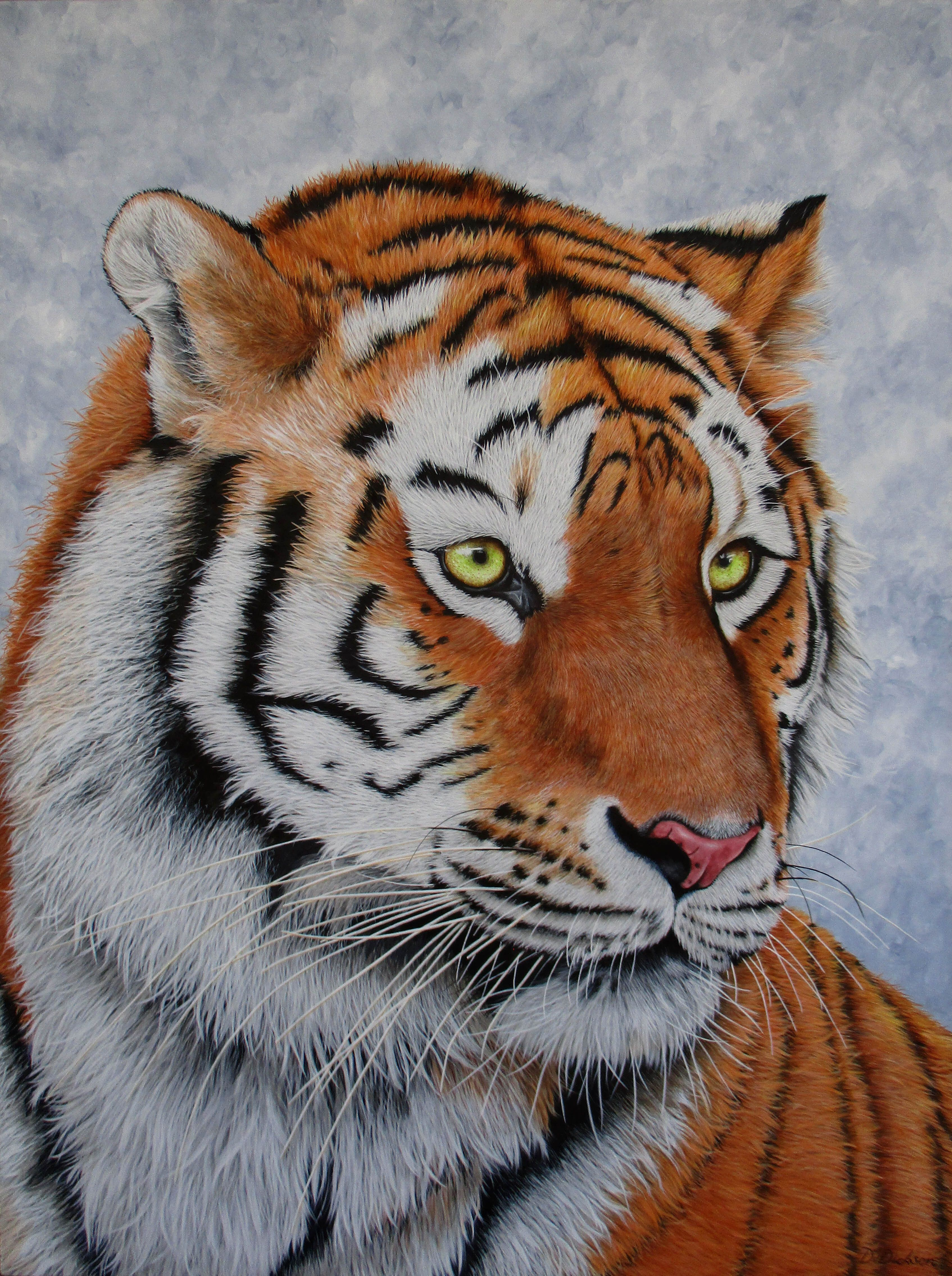 free wildlife reference photos for artists
