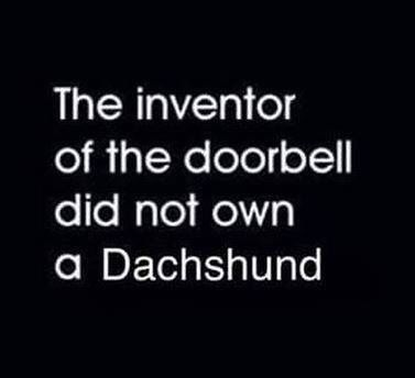 Absolutely. Mine go ballistic when the doorbell rings!