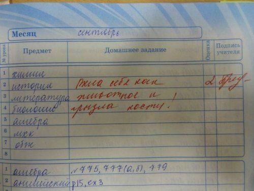 Весёлые записи в школьных дневниках и тетрадках (27 фото ...