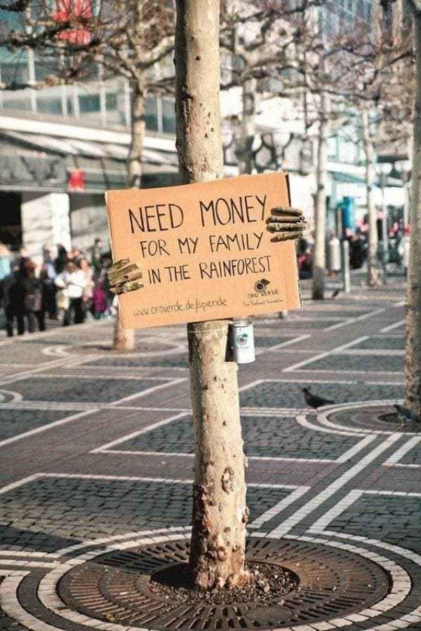 Damit die Reichen noch reicher werden, wird auch irgendwann, der letzte Urwald gerodet, nur, von wem bekommen dann, auch die Reichen,für ihre Kinder …