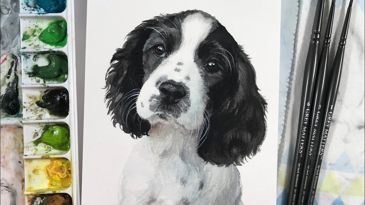 English Springer Spaniel Puppy Watercolor Time Lapse Youtube Spaniel Puppies Springer Spaniel Puppies English Springer Spaniel Puppy