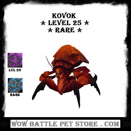 Kovok Wow Pet For Sale Kovok Raid Pet Level 25 Kovok Pets For Sale Warcraft Pets Pets Online