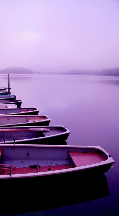 Morning Fog And A Hot Cup Of Coffee I Can Picture It Lila Wie Liebe Deep Purple Lila Bilder