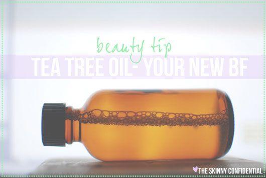 Drinking tea tree oil weight loss