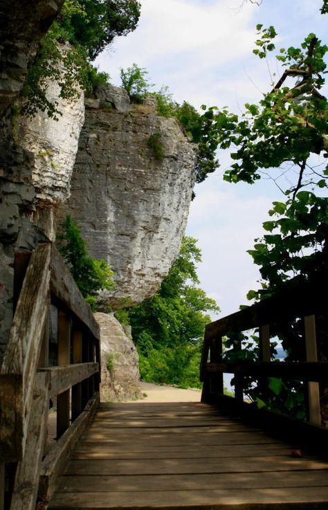 Cave-In-Rock State Park es un parque estatal de Illinois, en 240 acres, en la ciudad de Cave-in-Rock, condado de Hardin, Illinois en los Estados Unidos. El parque estatal contiene el histórico Cave-In-Rock, un punto de referencia del río Ohio. Es mantenido por el Departamento de Recursos Naturales de Illinois.