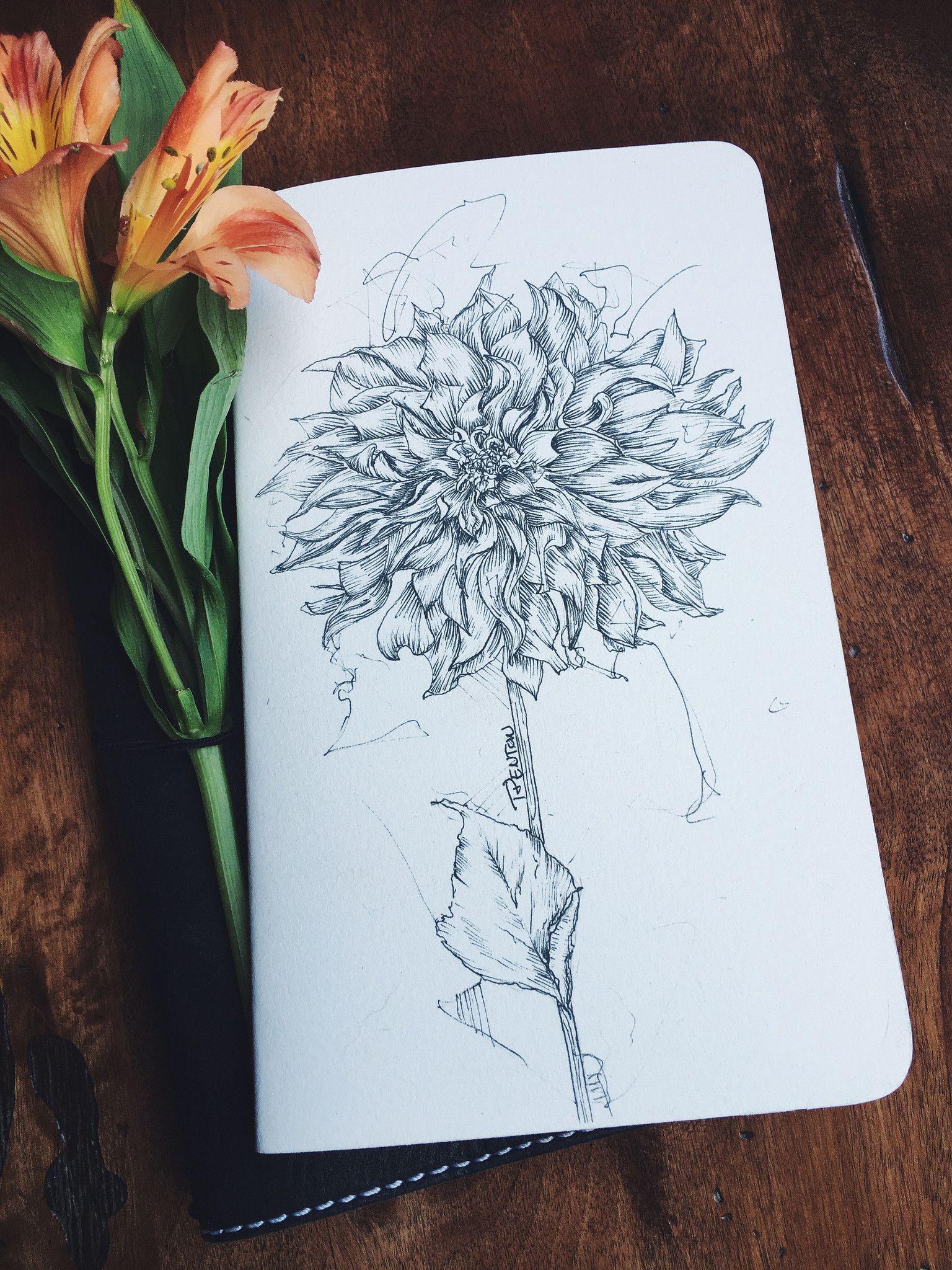 dahlia journal ©