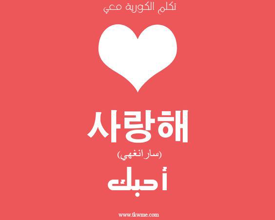 تعلم اللغة الكورية احبك بالكورية Learn Korean Korean Language Learn Japanese Words