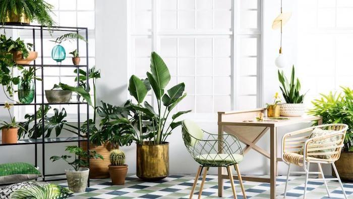 Pflanzen Die Wenig Licht Benötigen ein esszimmer mit viele pflanzen die indirektes licht brauchen