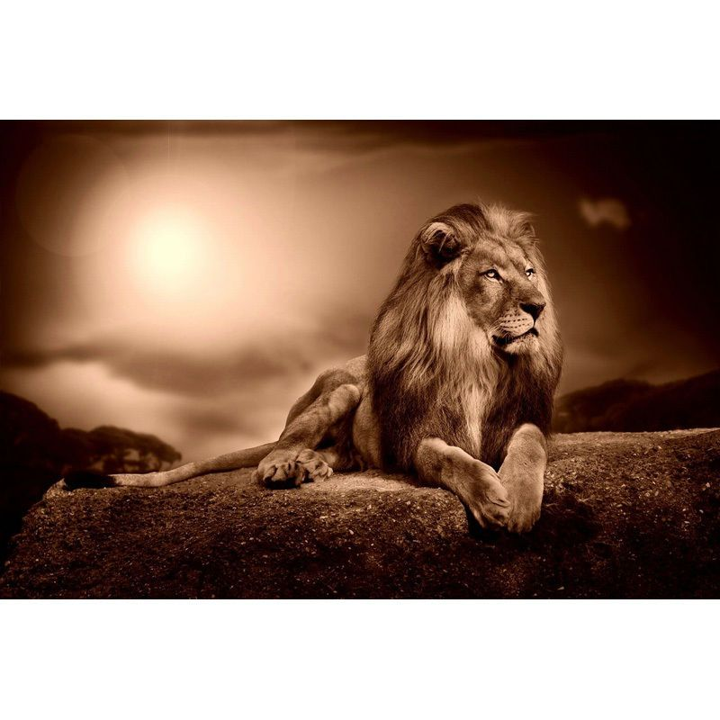 Aslan Roaring Wallpaper 64247