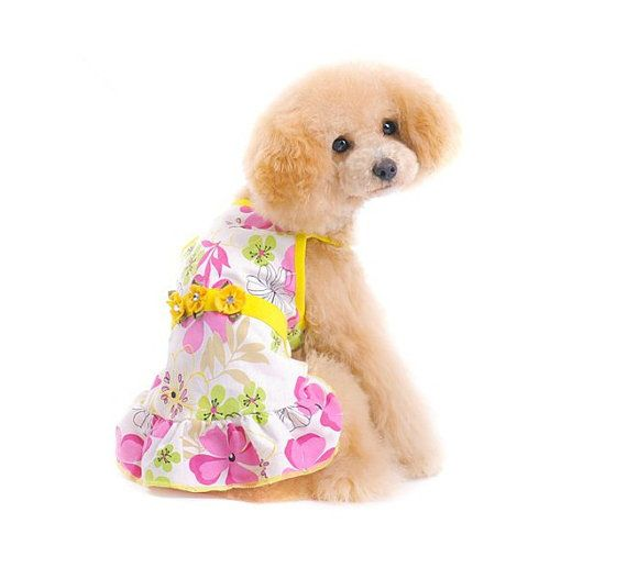 Pet clothes dog clothes summer wear clothes tidy by kelifastner