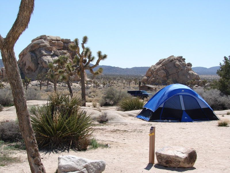 Rv Camping Trip To Cottonwood Springs Campground In Joshua