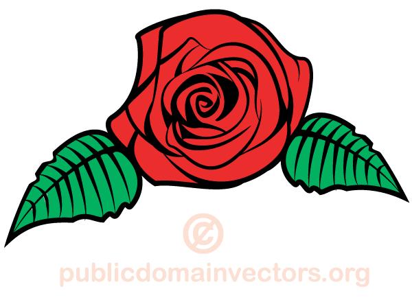 Vector Rose Flower Image Flower Images Free Vector Art Rose Flower