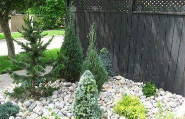 Awesome Conifer Garden Ideas #immergrünesträucher Awesome Conifer Garden Ideas...,  #Awesome #Conifer #creativegardenideasawesome #Garden #ideas #immergrünesträucher