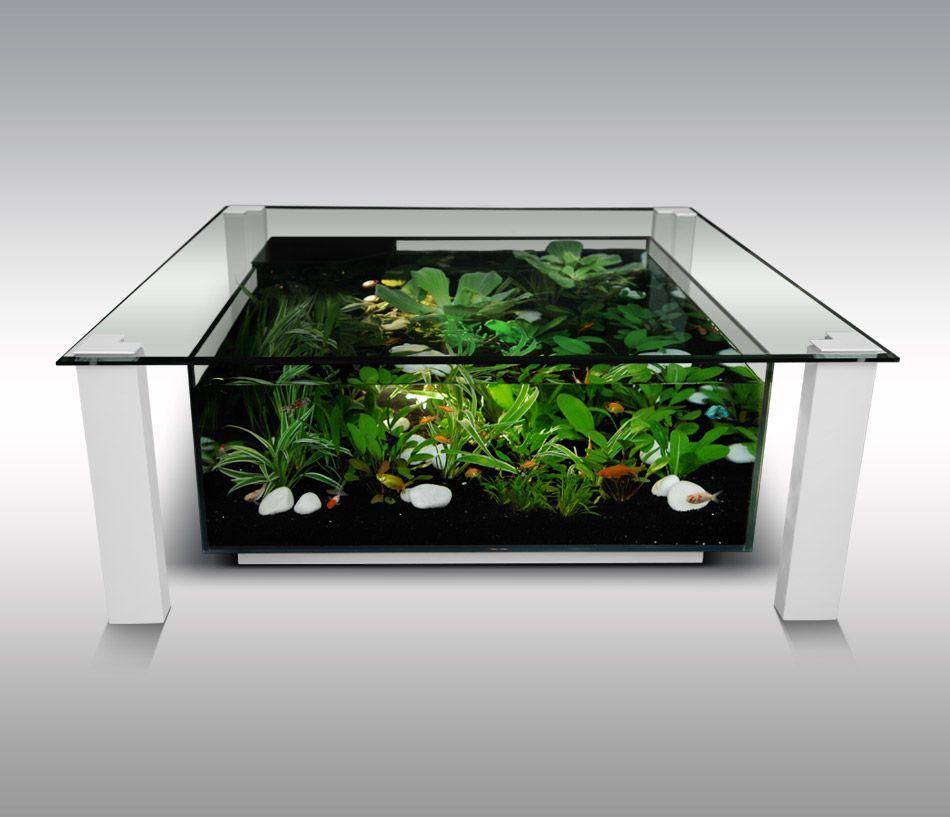Aquarium table basse | H o m e | Pinterest | Aquariums