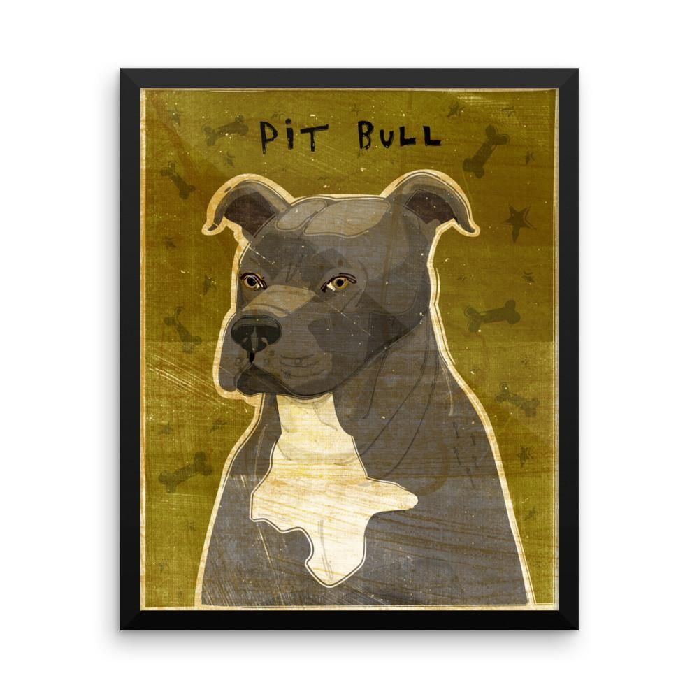 Blue and White Pit Bull Framed poster | Products