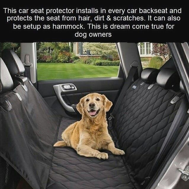 Do you take your dog on car rides? Then you know the struggle to get ...