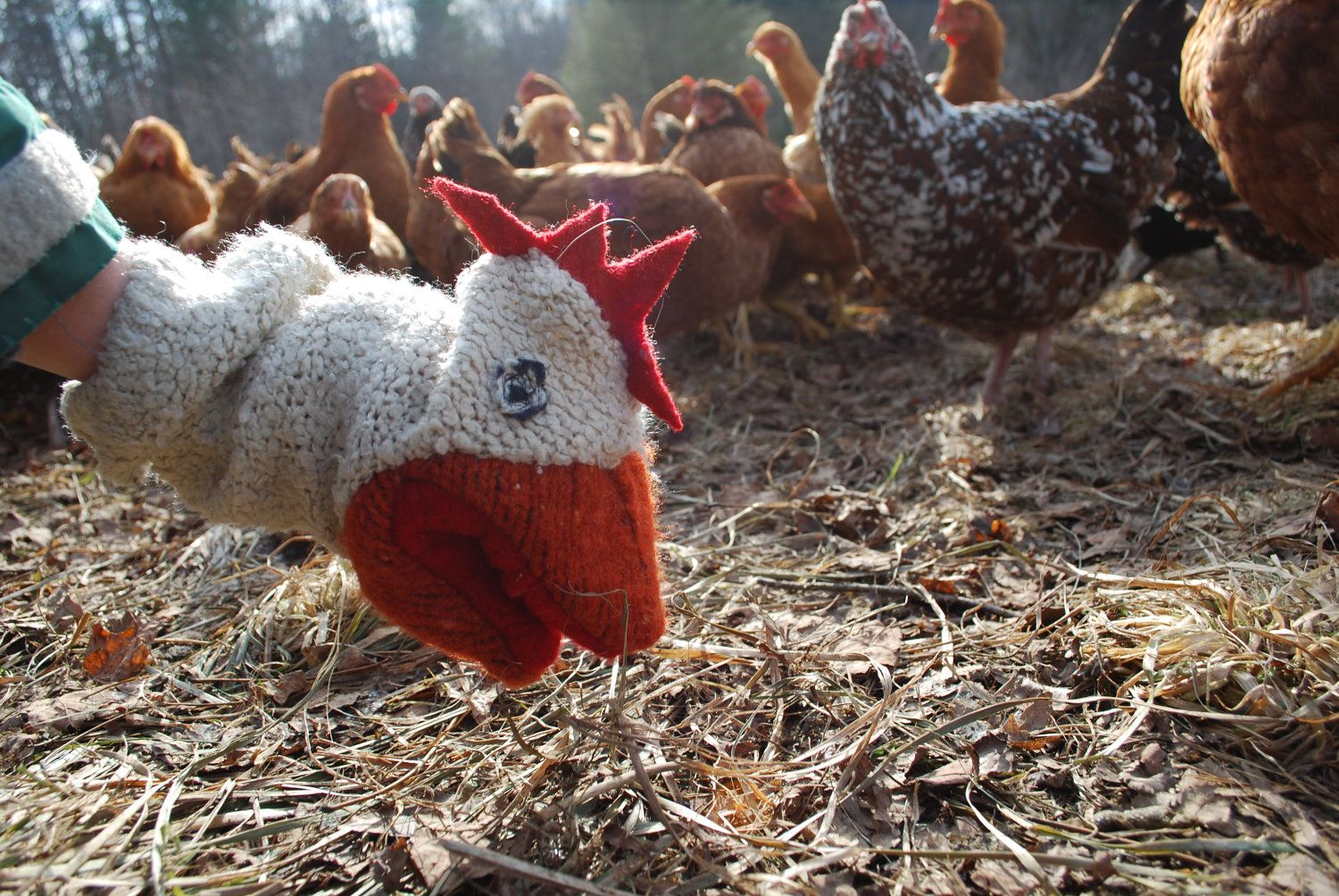 Chicken Sweater Puppet. $48.00, via Etsy.