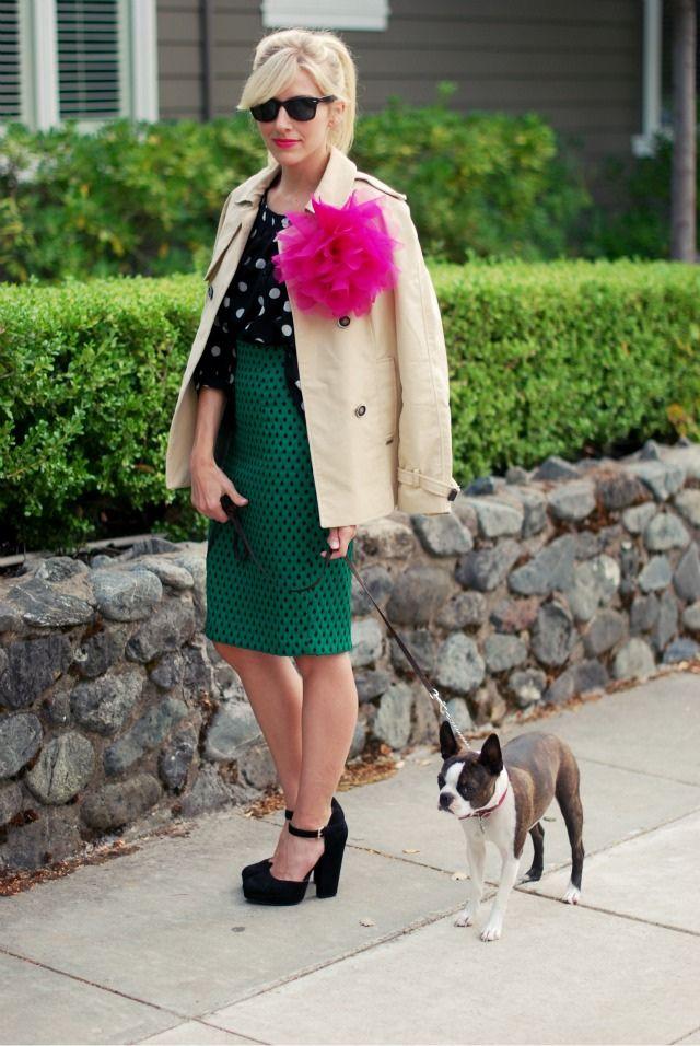 www.FabGabBlog.com   #dog