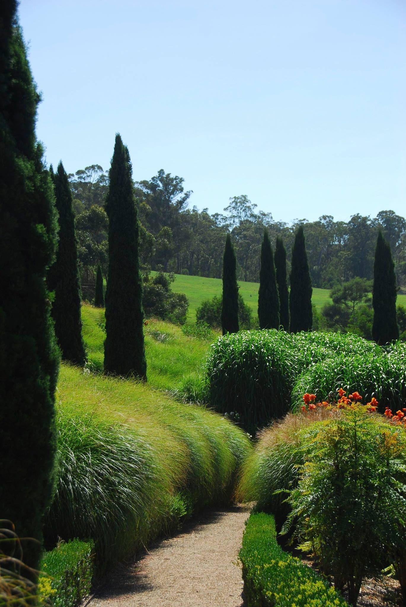Columns & grasses Michael McCoy, Australia Backyard