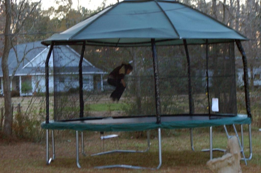20728263_151200_full.jpg 1024×679 pixels : trampoline with tent enclosure - memphite.com