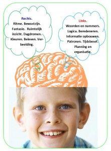 """Onderwijs is gericht op de linker hersenhelft. Maar is dit ook de hersenhelft waar jij het liefst mee werkt? Als jij het best met kleuren en plaatjes denkt, als je een plaatje beter onthoudt dan een woord, als je liever tekeningen maakt van wat de leerkracht zegt in plaats van woorden opschrijven, dan ben jij iemand die de rechterkant van de hersenen liever en beter gebruikt dan de linker. Dat is een gave die beelddenken heet.  """"Ik leer anders"""""""