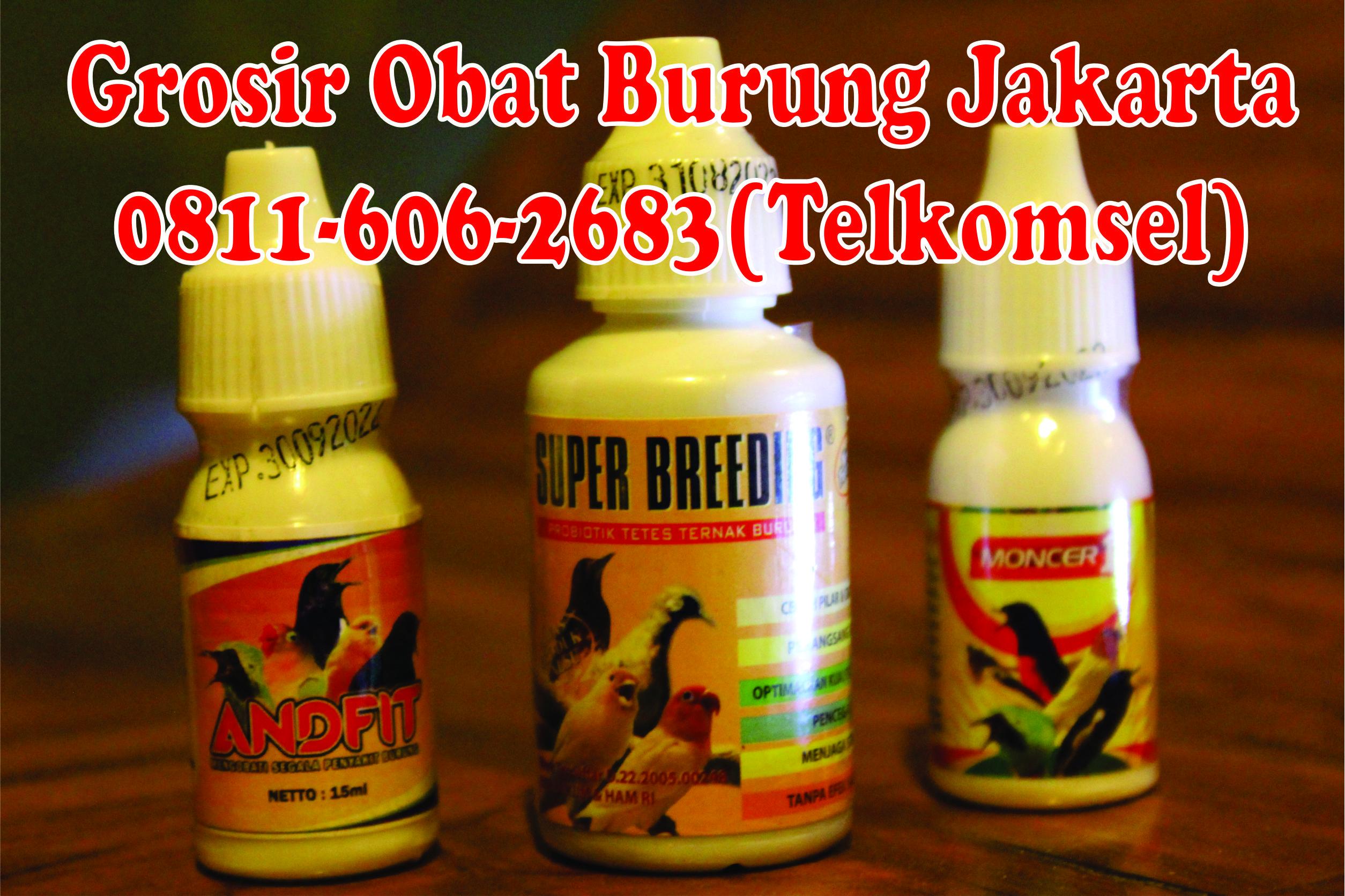 Grosir Jakarta Burung Surabaya Obat Alami Burung