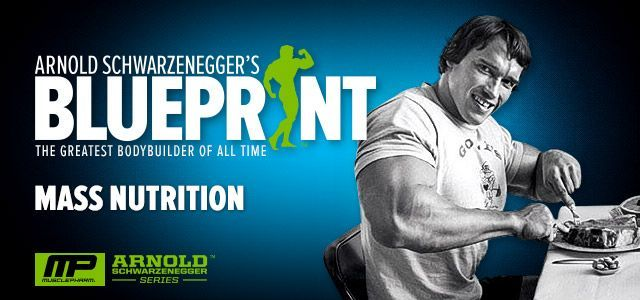 Arnold schwarzenegger blueprint trainer mass nutrition overview malvernweather Images