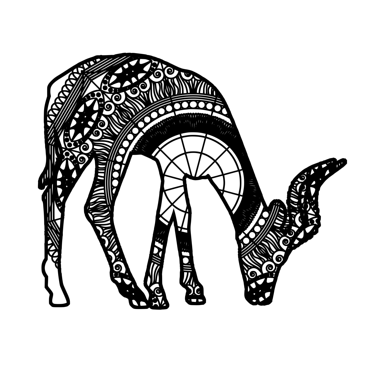 Download Antelope Mandala Animal Svg | Antelope, Mandala, Svg