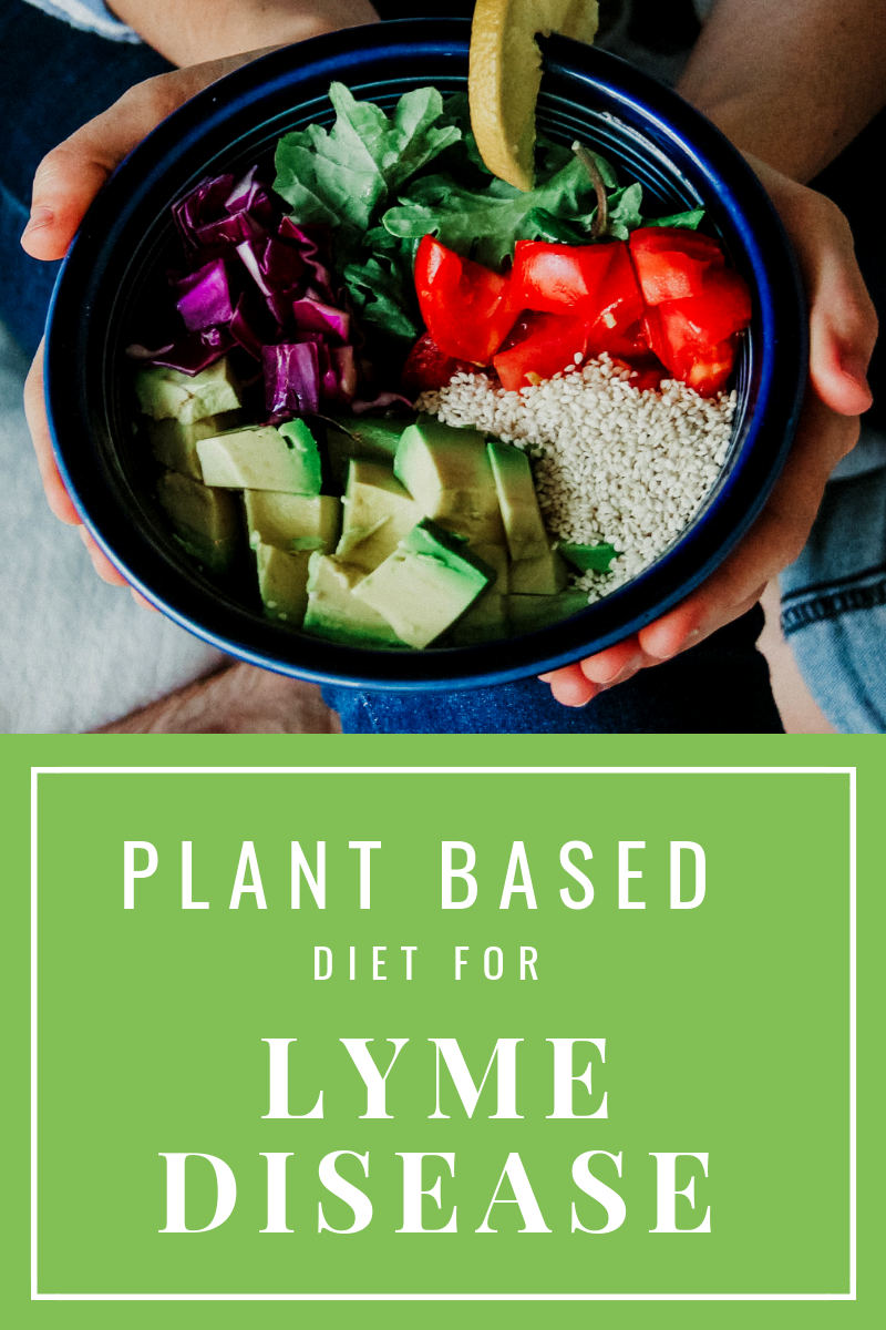 Plant Based Diet For Lyme Disease | Jana Eats Plants | Lyme