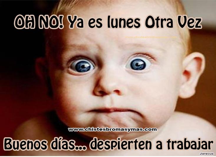 Noooooo ya ya borrachos - 4 1