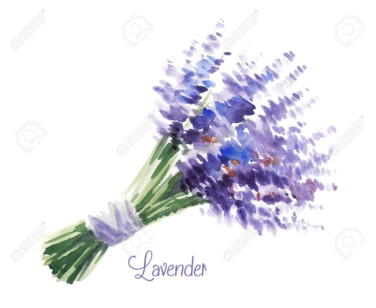 Watercolor bouquet vector 水彩 アート背景 画